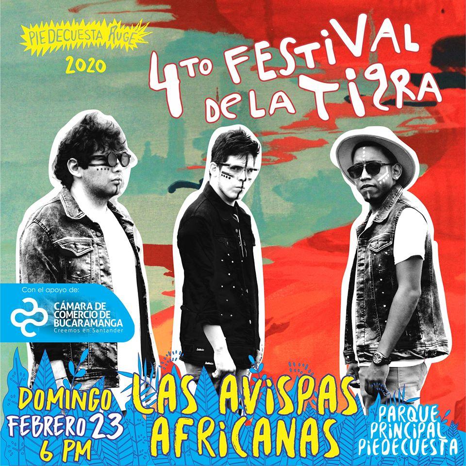 Rugen Las Avispas Africanas desde el Festival de la Tigra