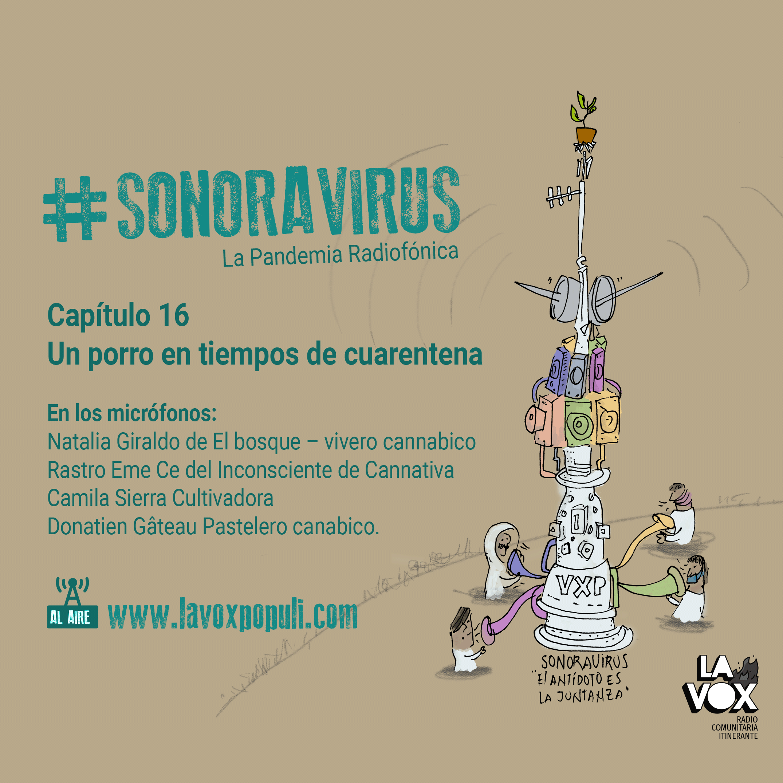 🍁 #SONORAVIRUS - La Pandemia Radiofónica. Capítulo 16: 4/20: Un porro en tiempos de cuarentena 🍁